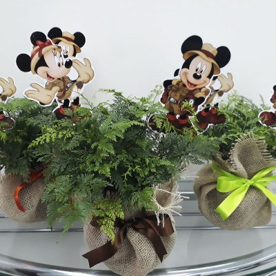 Minnie e Mickey Safari